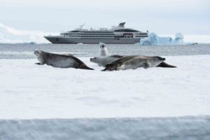 06.08.2019 - 7098-Hanusse Bay-Antarctica