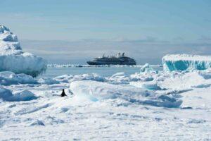 06.08.2019 - 8058Banquise Antarctique